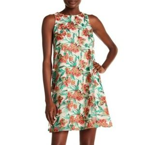Embroidered Floral Swing Dress